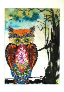 Pukka owl